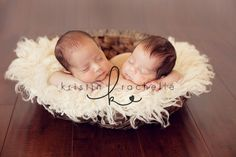 twin photographi, newborn pictures, twin photography, little birds, newborn twins photos