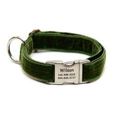 Rita Bean Engraved Buckle Personalized Dog Collar - Velvet (Green)