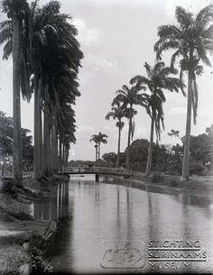 Het zoetwaterkanaal in Nickerie. Datum: Locatie: Nickerie, Suriname Vervaardiger: Augusta Curiel Inv. Nr.: gn-57/6-23 Fotoarchief Stichting Surinaams Museum