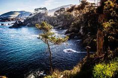 Point Lobos-Carmel