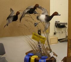 Three Years of Canvasbacks would look awesome like this...