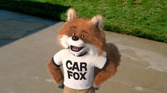 22 Best The Car Fox Images Fox Foxes Red Fox