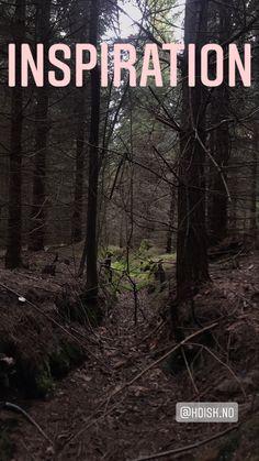 Norwegian woods. Inspiration. #VUGG #norway #skog #HOISK #spruce #gran #inspiration Origami Bag, Norwegian Wood, Clean Beach, Playground, Norway, Sustainability, Woods, Neon Signs, Concept