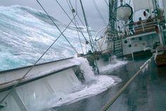 Sailing on a Tall Ship   Statsraad Lehmkuhl, April, 1994