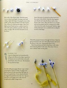 sugar flowers 24