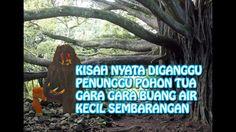 Kisah Nyata !!! Diteror Hantu Penunggu Pohon Tua, Gara Gara Buang Air Kecil Sembarangan