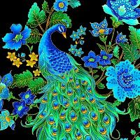 Enchanted Peacock Plumes Pattern
