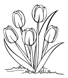 gambar bunga tulip - Best of Wallpapers for Andriod and ios Spring Coloring Pages, Flower Coloring Pages, Colouring Pages, Coloring Books, Tulip Drawing, Tulip Painting, Fabric Painting, Canvas Painting Designs, Flower Drawing Tutorials