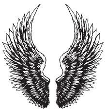 eagle wings - Google Search More