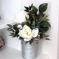 Stunning Magnolias!!!