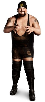 "The Big Show  Height: 7'0""  Weight: 441 lbs.  From: Tampa, Fla.  Signature Move: Chokeslam; KO Punch; Colossal Clutch  Career Highlights: World Heavyweight Champion; WWE Champion; ECW World Champion; WCW Champion; World Tag Team Champion; WWE Hardcore Champion; United States Champion; WWE Tag Team Champion; Intercontinental Champion"
