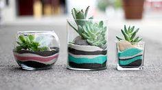 ➳ DIY: Simple Succulent Terrariums & Gold Jars - YouTube