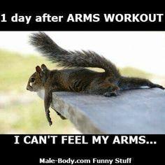 Fitness Motivation : Always #armday #shakeology #beachbodycoach #goals #getfit #maxout  https://veritymag.com/fitness-motivation-always-armday-shakeology-beachbodycoach-goals-getfit-maxout/