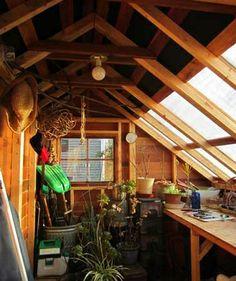 DIYCITY Sunhouse サンハウス カナダ製ミニキャビン シダーシェッド