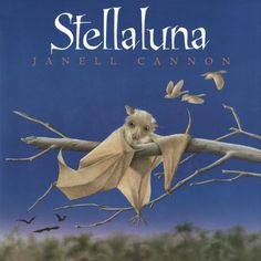 Stellaluna and Bat News (non-fiction passage): Paired reading with lesson, graphic organizers and more.