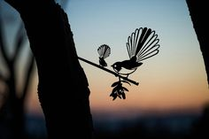 Add a bird silhouettes from Metalbird to your own landscape or give on as a gift. View the collection and get one today. Rock Of Ages Tattoo, Bird Sculpture, Garden Sculptures, Weathering Steel, Flax Flowers, Forest Habitat, Misty Eyes, Metal Garden Art, Number Games