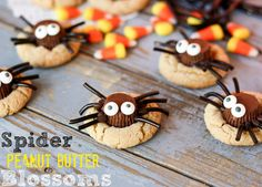 Spider Peanut Butter Blossoms.  Cutest Halloween cookies EVER! @BakesCupcakes