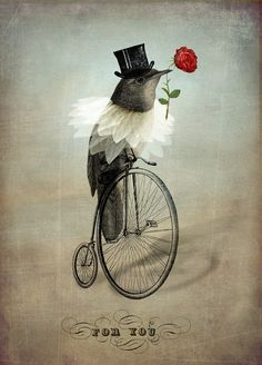the groom Catrin Welz Stein