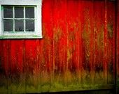 red (and moss)
