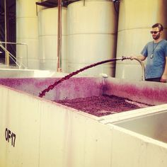 Pumping over reds during vintage at Langmeil Wines.