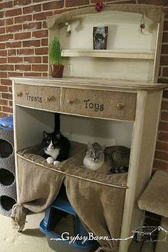 Cool cat hang-out spot. Nice way to upcycle a piece of used furniture.