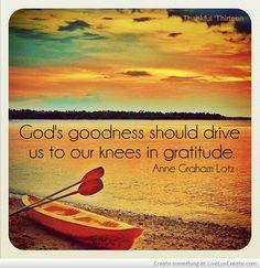 Ann Graham Lotz Gratitude Quote Picture by Lorri McCallum - Inspiring Photo