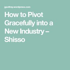 How to Pivot Gracefully into a New Industry – Shisso