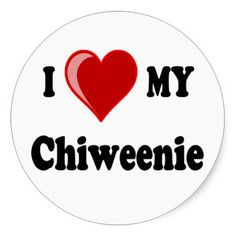I Love (Heart) My Chiweenie Dog Stickers Chiweenie Puppies, Chihuahuas, Dachshunds, Funny Dogs, Cute Dogs, Puppy Names, Different Dogs, Mini Dachshund, I Love Heart