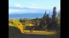 OVNIS CAPTURADOS EN VIDEO RUSIA