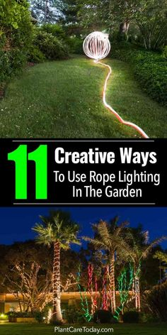 Rope lighting is an outdoor landscape lighting element to use for creating that final WOW factor, lighting tree trunks, garden beds, steps [Creative Ideas]