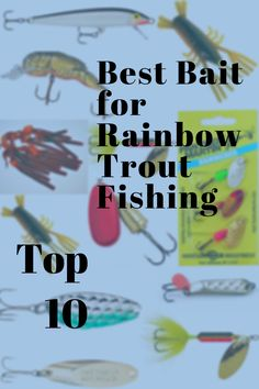 Gone Fishing, Best Fishing, Fishing Hook Knots, Trout Fishing Tips, Brown Trout, Rainbow Trout, Alters, Eating Habits, Bait