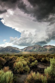 ✯ Storms At Mono Lake