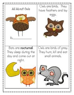 All About Owls ~ Crafts, writing, fact & opinion, research & writing, word wall, poem