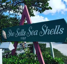#shesellsseashells #ilovetravel One of my favourite places in the world #sanibelisland  So many wonderful memories of days gone by.