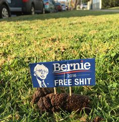 Guerrilla Artist Sabo Thinks Bernie Sanders' Ideas Are Full of $#!t! One Kind, Specifically