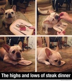 The Highs And Lows Of Steak Dinner