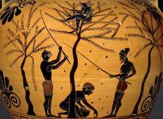 Food and Diet: Ancient Greece vs. Modern Greece via @Elena Kovyrzina Paravantes-Hargitt
