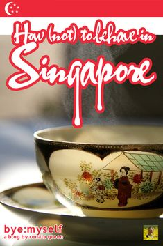 Pinnable Picture for the Post How (not) to behave in SINGAPORE Singapore Malaysia, Countries To Visit, Asia Travel, Chewing Gum, City State, City Break, Travel Aesthetic, Travel Information, Public Transport