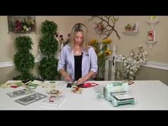 How to Use Sizzix Flip-Its Dies with Big Shot Machine