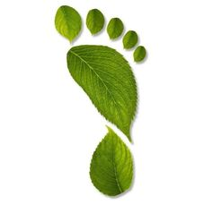 footprint of leaves with clipping path XXL Art Et Nature, Nature Crafts, Nature Org, Go Green, Green Colors, Illustration, Art Plastique, Shades Of Green, My Favorite Color