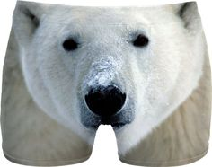 Check out my new product https://www.rageon.com/products/polar-bear-men-underwear on RageOn!