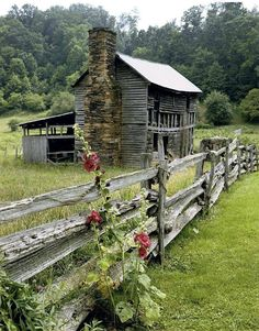 Country living ❤