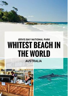 The world withest sand can be found at  HYAMS BEACH. This Beach holds the Guinness Book of World Records title of the whitest sand. Crystal-clear water, forests, and wetlands only add to Jervis Bay's appeal. making it a must-see when you are in Australia #Australia #Travel