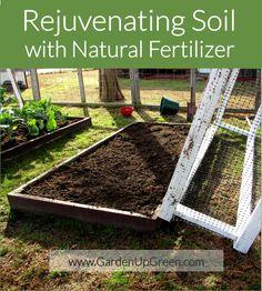 Rejuvenating Soil with Natural Fertilizer