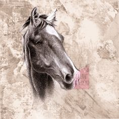 Rotumallisto - Taide Milou Horses, Animals, Animales, Animaux, Horse, Words, Animal, Animais
