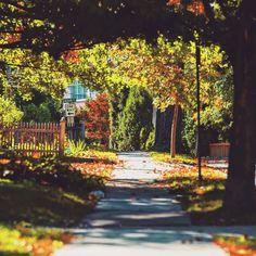 Katonah NY #katonah #nyphotographer #newyork #what_i_saw_in_nyc #ny #travelphotographer #instatravel #trip #beautiful #travelgram #instapassport #instago #wanderlust #mytinyatlas #unlimitedparadise #outdoors #explore #life #vacation #instagood #igtravel #danmleephotography #vacationwolf #passionpassport #fall #abc7ny #fall #autumn #autumn #leaf @abc7ny