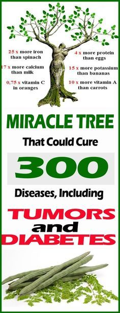 The Miracle Tree That Could Cure 300 Diseases, Including Tumors and Diabetes