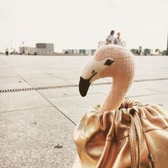 #Repost @minischmidtblog  #missioneinhorn - Wir sind wieder auf Strecke! Also #wosinddieeinhörner? www.minischmidt.de #minischmidt #dreamteam #einhornsuche #zauberwald #ernaontour #flamingolife #flamingoundercover #wasdasfür1flamingolife #flamingoontour #rosavogel #wartenaufdenzug #mitsackundpack #turnbeutel #rosegold #rosegoldliebe #elektropulli #rosawirkommen #thepinkflamingostoryneverstops