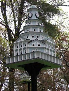 building purple martin bird houses