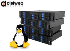 Linux dedicated server is a preferable choice among many businesses as it is cost effective and offers high security, control and management options giving the customer root access to the server.